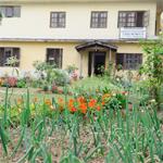 たべものやの無農薬ベジタブル・ガーデン